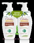 Acheter Rogé Cavaillès Hygiène intime Soin naturel Toilette Intime Sécheresse 2Fl/250ml à Courbevoie