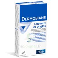 Pileje Dermobiane Cheveux & Ongles 40 Gélules à Courbevoie
