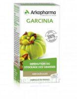 Arkogélules Garcinia Gélules Fl/45 à Courbevoie