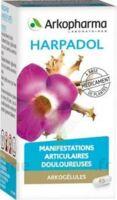 ARKOGELULES HARPAGOPHYTON, 150 gélules à Courbevoie