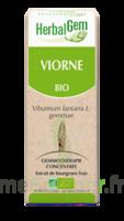 Herbalgem Viorne Macérat bio 30ml à Courbevoie