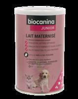 Biocanina Lait Poudre Maternisé B/400g à Courbevoie