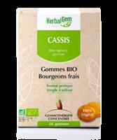 Herbalgem Gomme Cassis Bio B/24 à Courbevoie