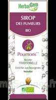 Herbalgem Sirop Bio Des Fumeurs 150ml à Courbevoie
