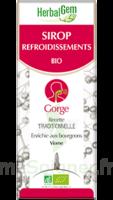 Herbalgem Sirop Bio Refroidissement 150ml à Courbevoie