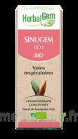 Herbalgem Sinugem Solution Buvable Bio Fl Cpte-gttes/30ml à Courbevoie